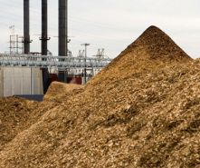 Biomass Pile Monitoring